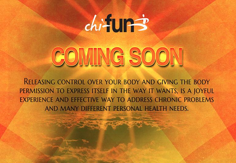Design der Startseite für www.chi-fun.com