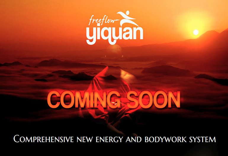 Design Startseite  freeflow-yiquan